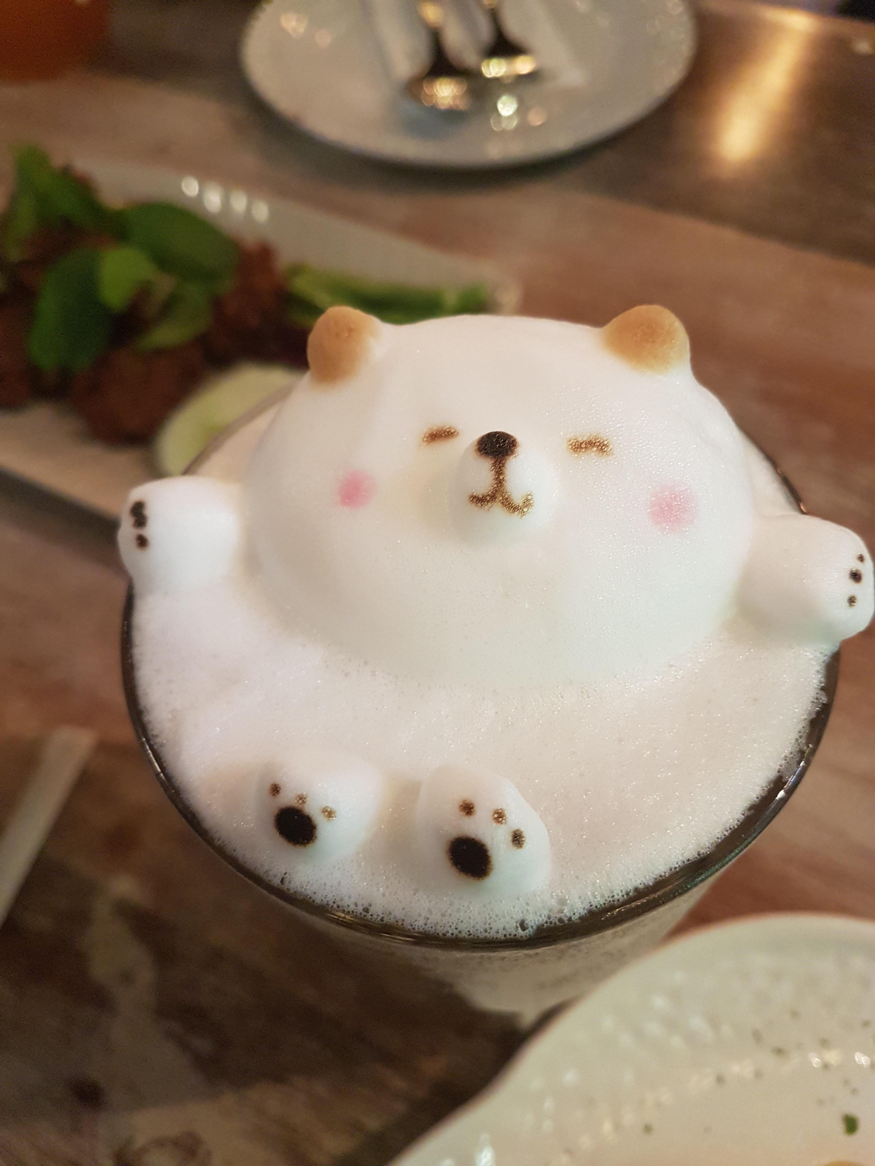 art-bear-beverage-1436172